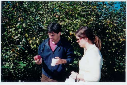 picking-apples.jpg
